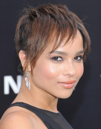 Zoe Kravitz Short Razor Hairstyles For Straight Hair Popular Haircuts