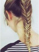Fishtail Braid, Ponytail Hairstyles