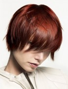 Short Red Hairstyles, Straight Hair Cut