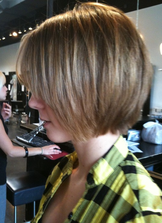 Shaggy Bob Haircuts Ideas For 2014 Popular Haircuts