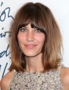 Alexa Chung Hairstyles: Brown Medium Straight Haircut