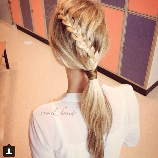 2014 Braided Hairstyles: Cute Braids and Ponytails