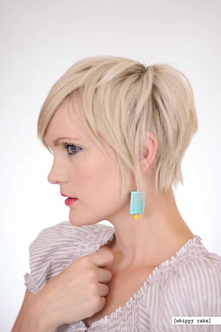 2015 Long Pixie Haircut