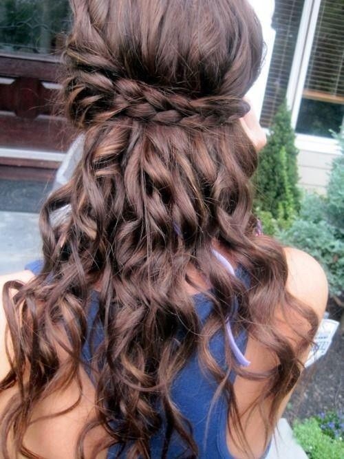 Wondrous Cute Half Up Down Braid Hairstyles Best Hairstyles 2017 Hairstyle Inspiration Daily Dogsangcom