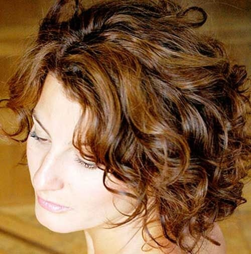 Hairstyles For Short Curly Hair Videos : hairstyles for curly hair blond hair lights the short curly hairstyle ...