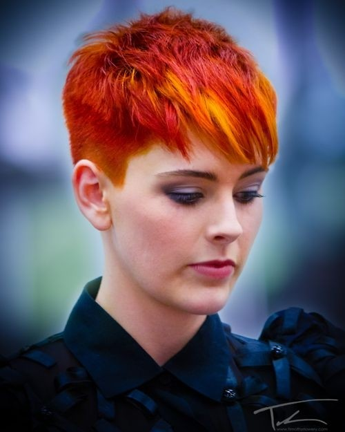 Crazy Daring Hair Color for Short Hair