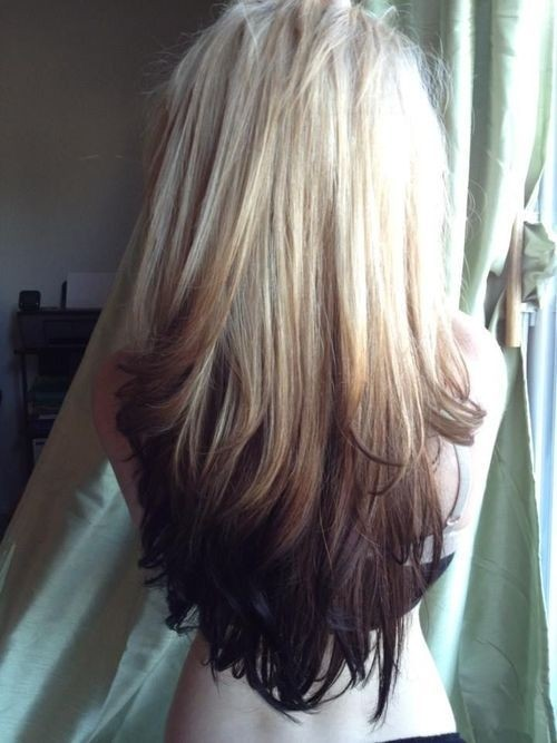 Blonde to Dark Brown Ombre, Long Hair