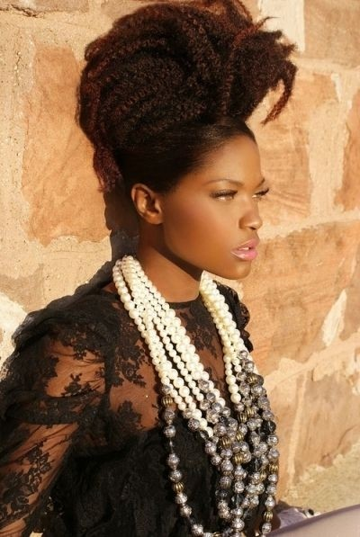 Cute African Hair Braiding Styles: Updo Hairstyles