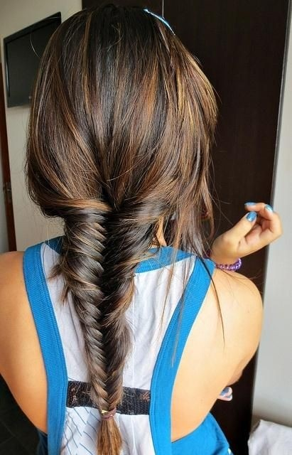 French Fishtail Braid Hairstyle Back View