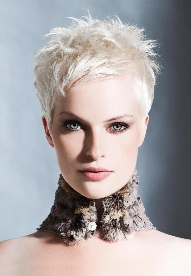 Pixie Cut White Hair Messy Spikey