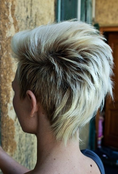 Punk Hairstyle for Short Hair Back View