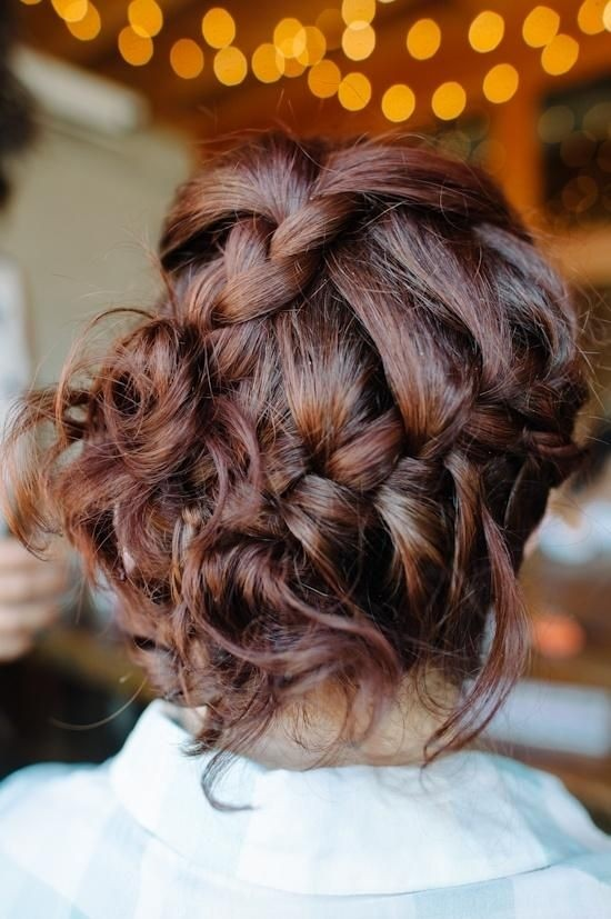 Braided Updo Back View: Messy Hairstyles