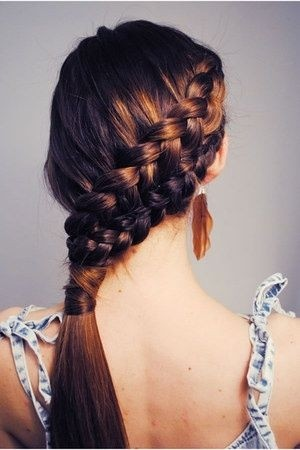 Double French Braided Hairstyle Back View