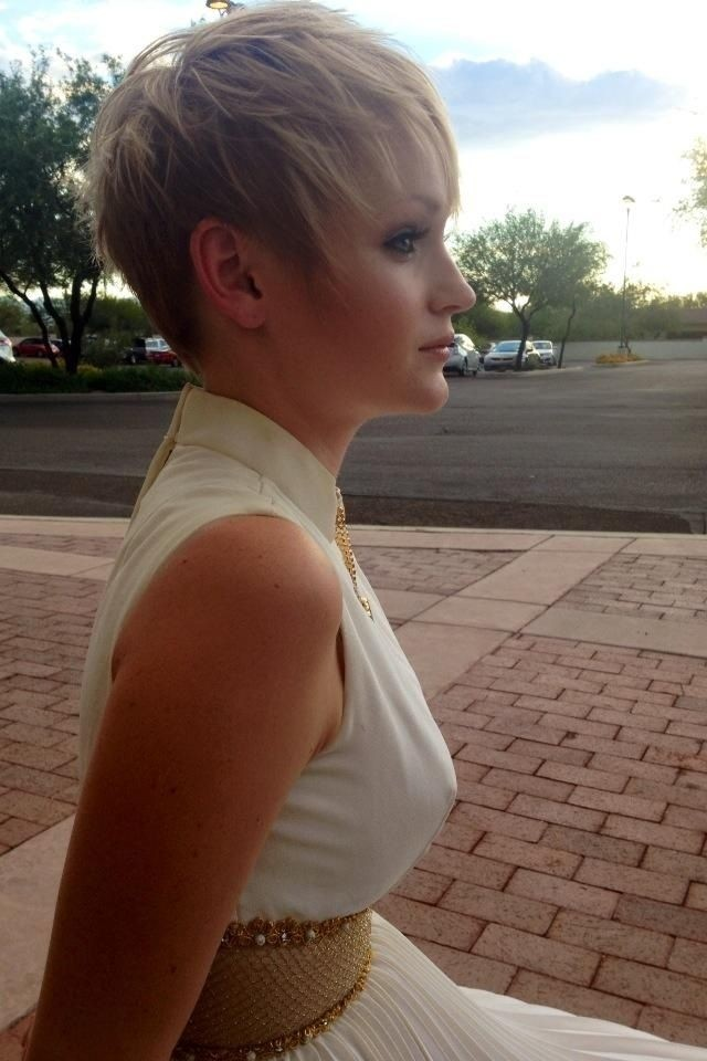 Simple Short Hairstyles for Fine Hair: Short Hair with Blonde Highlights