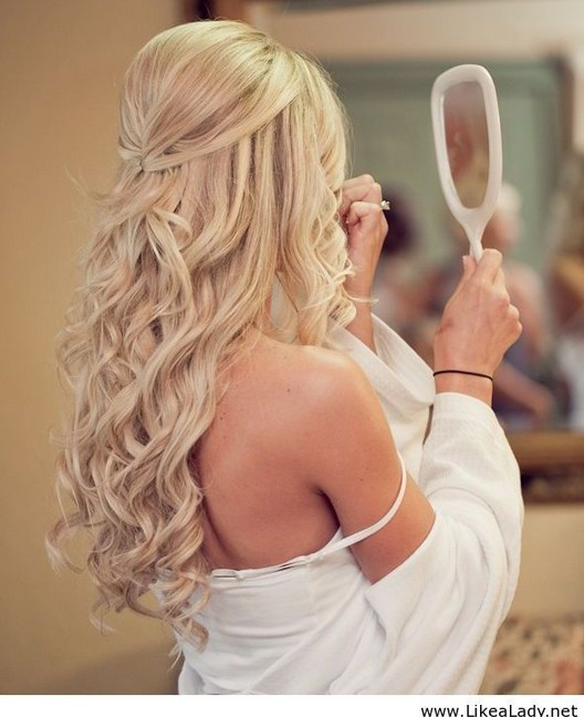 Chic Half Up Half Down Hairstyles for Wedding - Bride Hairstyles 2015