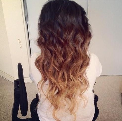 Black Blonde Long Hairstyle - Ombre Hairstyles