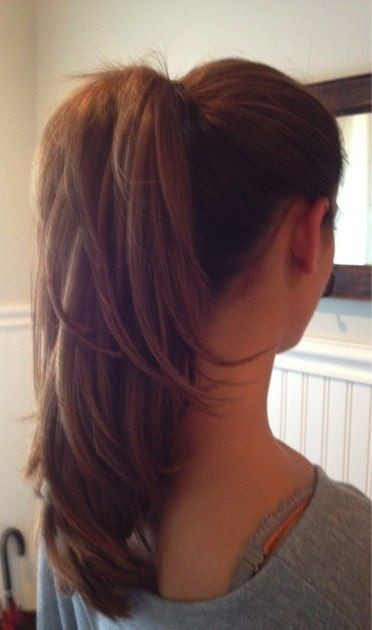 Layered Ponytail Ideas
