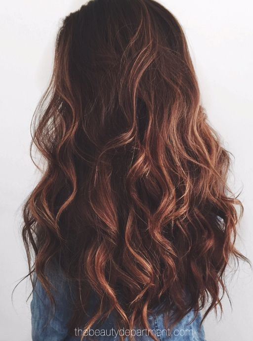 Long Curly Hairstyle with Dark Brown Hair