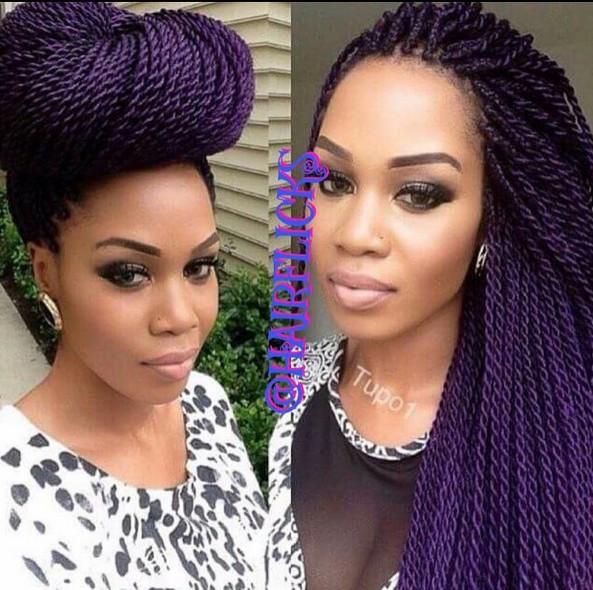Chic African American Braid Hair Style - Updos