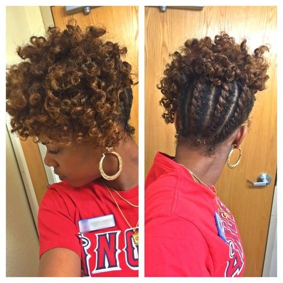 Flat Twist Natural Hair Updo - African American Braid