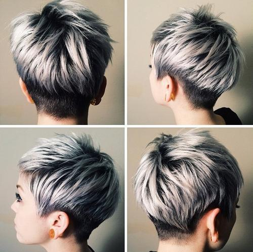 Black and Sliver Pixie
