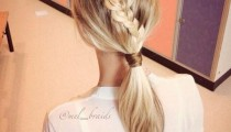 15 Hottest Braided Hairstyles